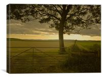 Tree and Field, Canvas Print
