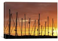 Sunset Silhouetting Masts of Yachts, Canvas Print