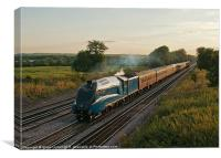 The Dorset Coast Express, Canvas Print