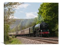 The Cathedrals Express, Canvas Print