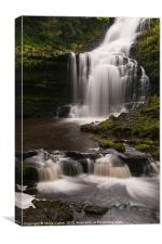 Scaleber Force, Canvas Print