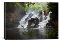 Virginia Water Cascades, Canvas Print