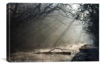 The Glamorganshire Canal, Canvas Print