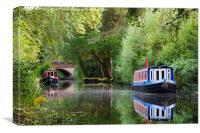 The Basingstoke Canal, Canvas Print