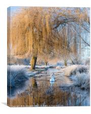 Winter in Bushy Park, Canvas Print