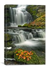 Scalebar Force, Settle, Canvas Print
