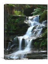 Blue Mountains Waterfall. Australia, Canvas Print
