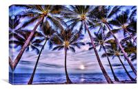 Beach Palms, Canvas Print