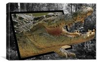 Crocodile Escape, Canvas Print