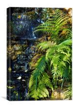 Green fern waterfall., Canvas Print