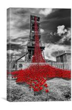 Woodhorn colliery weeping window poppies, Canvas Print