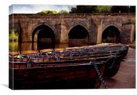 row,row,row your boats., Canvas Print