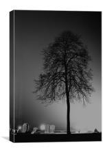 tree silhouette, Canvas Print