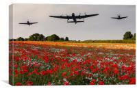 memorial flight, Canvas Print