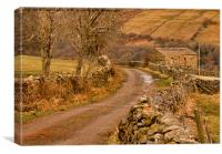Country Lane Yorkshire Dales, Canvas Print