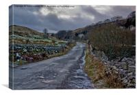 Country Road - Swaledale, Canvas Print