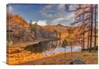 Autumn at Blea Tarn