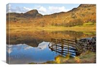 The Fence ~ Blea Tarn