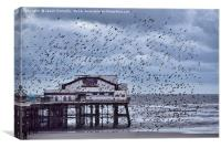 North Pier Starlings, Canvas Print