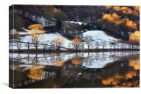 Grasmere Reflections, Canvas Print