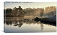 Tarn Hows Cumbria, Canvas Print