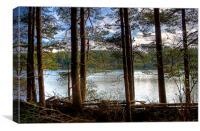 Beecraigs Loch, Canvas Print
