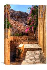 Steps to the garden, Canvas Print