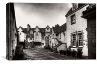 White Horse Close - B&W, Canvas Print