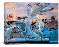Seagulls on Brighton Pier, Canvas Print