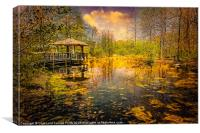 Wild Woodland Wetlands, Canvas Print