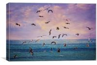 Gulls at Sunrise, Canvas Print