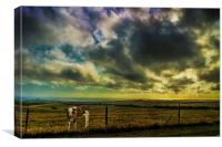 Up on the Downs Again, Canvas Print