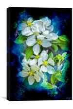 Pixie Blossoms, Canvas Print