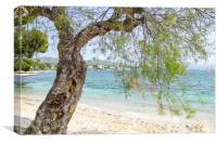 Illa D'Or Through The Trees, Canvas Print