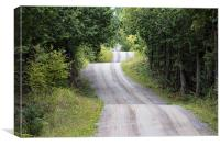 Country Roads, Canvas Print