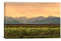 Sunset over the Pyrenees, Canvas Print