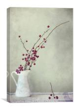 winter still life, Canvas Print