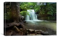 Janets Foss - Yorkshire, Canvas Print