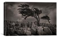 The wildness of Yorkshire, Canvas Print