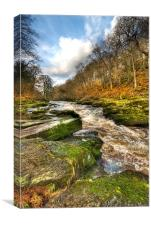 The Strid Wharfedale, Canvas Print