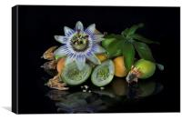 Passion flower and fruit, Canvas Print