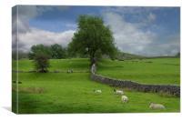 Yorkshire dales, Canvas Print