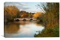 The River Avon Wiltshir, Canvas Print