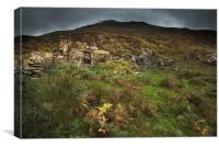 An old derelcit  cottage in Snowdonia. , Canvas Print