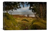 Loch Ba – Rannoch Moor, Canvas Print