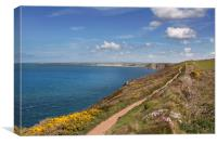 The south west coast path north of St Agnes head C, Canvas Print
