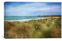 Sand dunes and marram grass Constantine bay , Canvas Print