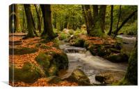 Golitha falls autumn  Cornwall, Canvas Print