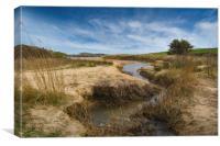 Amongst the dunes , Canvas Print