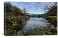 Rydal Water Spring, Canvas Print
